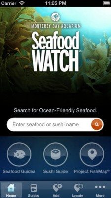 seafood-watch568x568