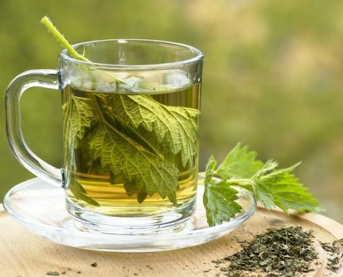 BM_Nettle tea in glass_54893957