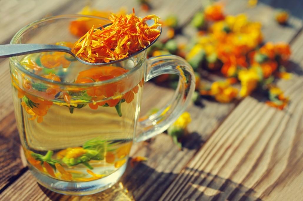 BM_Medicinal flowers of a calendula_90704920