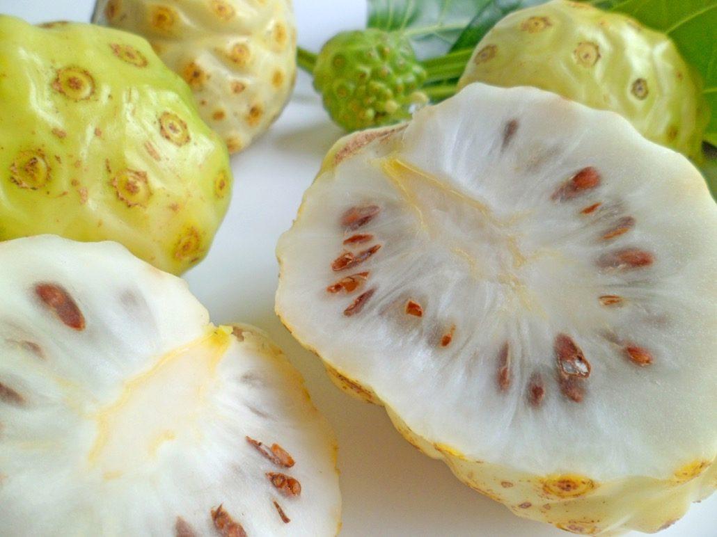 bm_noni-fruits-morinda-citrifolia-with-leaves_40424892